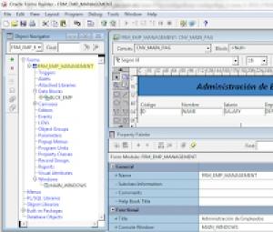 Trabajando en el Entorno Forms Developer